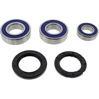 Wheel bearing and seal kit 251547