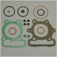 Gasket set topend P400210600257