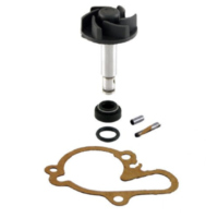 Water pump repair kit 100110080 für Rieju MRT Pro 50  2009-2010, 2,2/6,25 PS, 1,6/4,6 kw