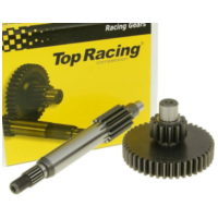 primary transmission gear up kit Top Racing +21% 13/43 for 13 tooth countershaft 11116 für Aprilia Gulliver  50 LH040 1998-1999, 4,3 PS, 3,2 kw