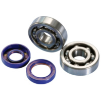 crankshaft bearing set Polini for Minarelli AM6, Generic, KSR-Moto, Keeway, Motobi, Ride, CPI, 1E40MA, 1E40MB 282.0003 für Rieju MRT Pro 50  2009-2010, 2,2/6,25 PS, 1,6/4,6 kw